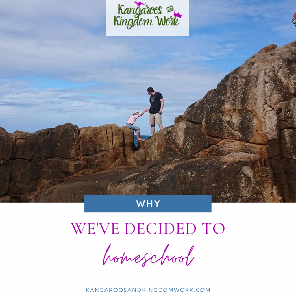 why we've decided to homeschool reasons for homeschooling aussie homeschooling