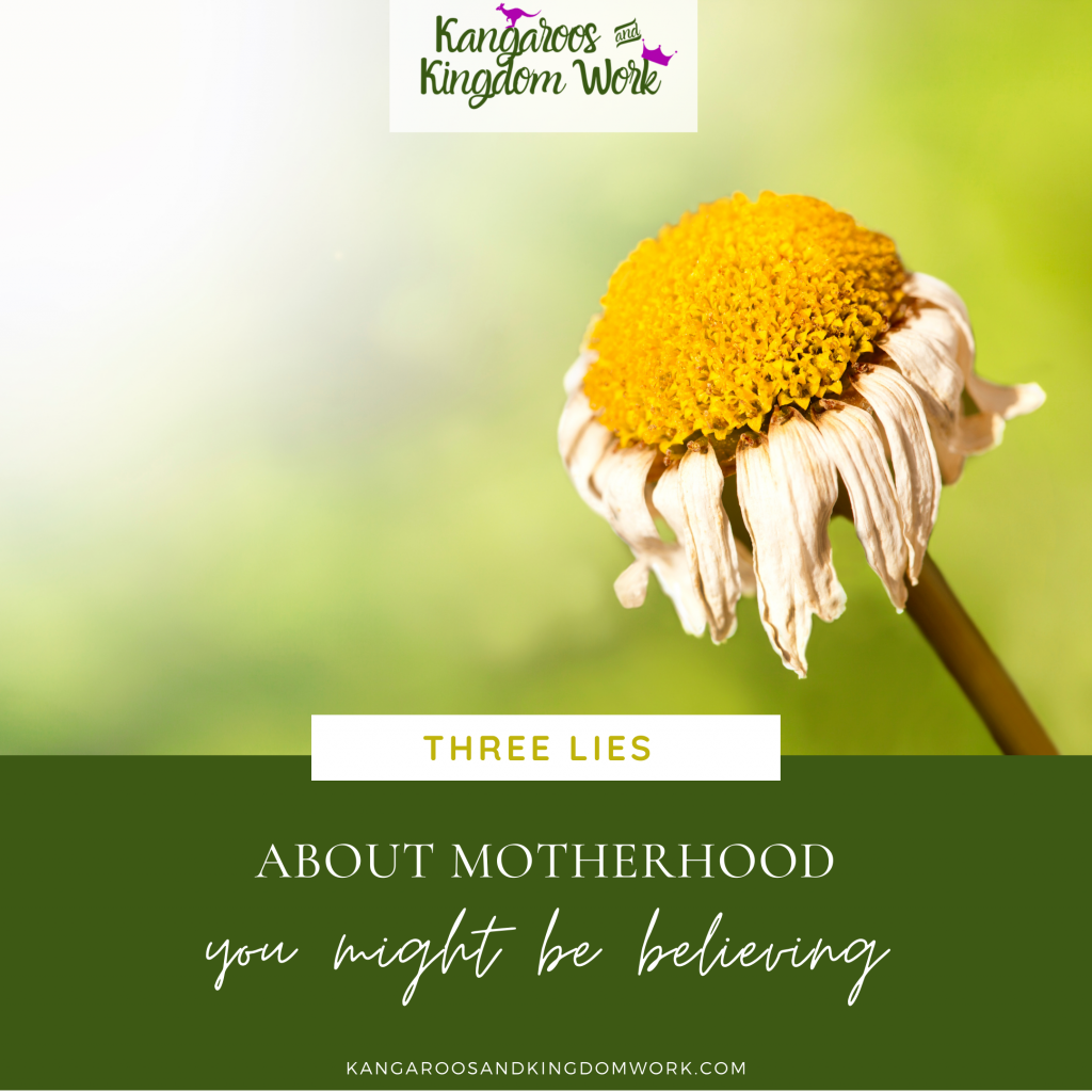 lies about motherhood biblical truth